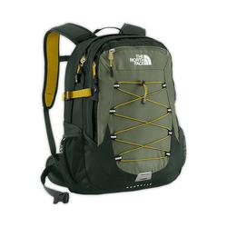 North face best-seller Borealis backpack anchorage green