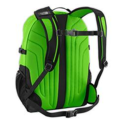 North Face Borealis backpack back panel view