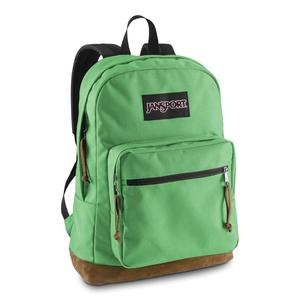 Jansport durable school backpack in verdant green color