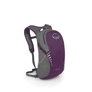 Osprey light daypack in purple