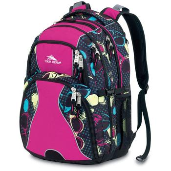 Picture of High Sierra Best-selling Swerve Backpack